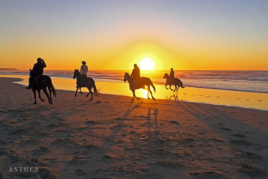 Passeggiate a cavallo | Itinerari sportivi e naturalistici