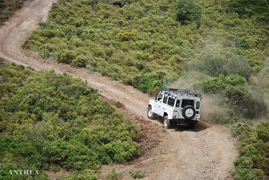 Escursioni e tour tematici Sardegna